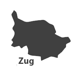 Umzug-Profis-Standort-Zug